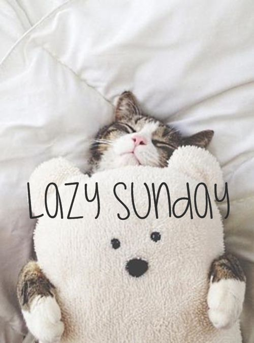 Image result for sunday morning